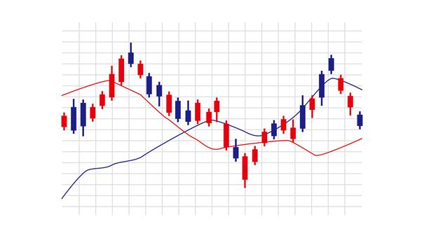 個人投資家の投資戦略